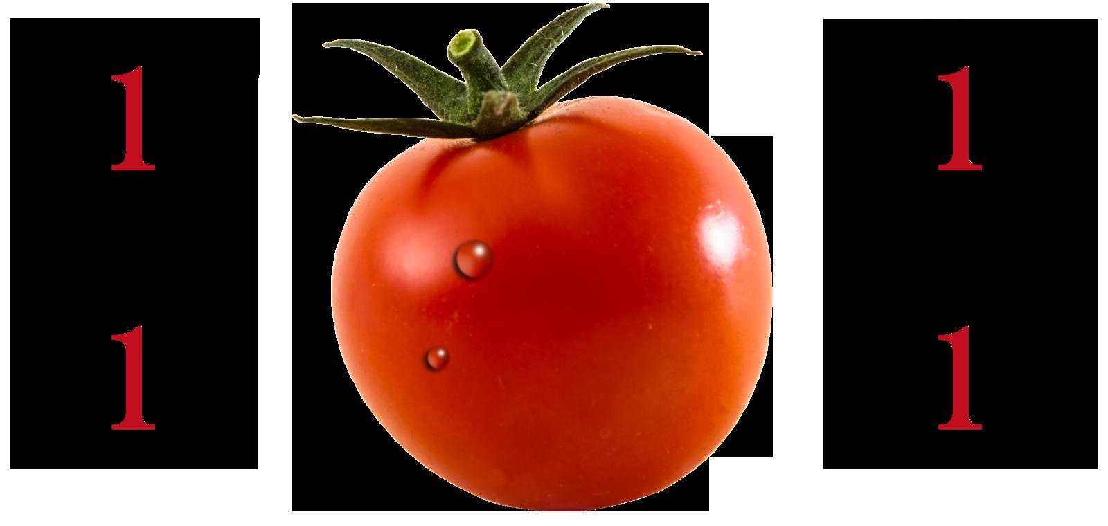 高糖度トマトについて